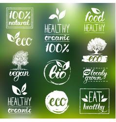 Eco organic bio logos handwritten vector