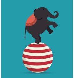 Elephant acrobat sphere festival funfair vector