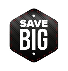 Save Big patch vector image vector image