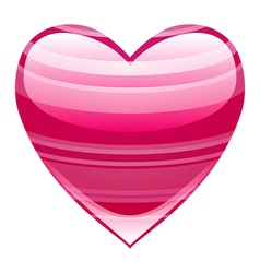 Beautiful heart vector image vector image