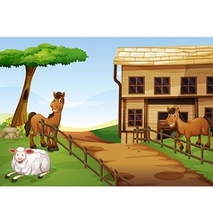 Two horses and a sheep in the farm vector image vector image