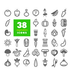 vegetables outline icons set vector image