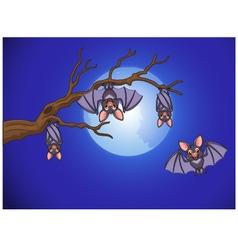 Adorable bat cartoon sleeping and fly at night vector image