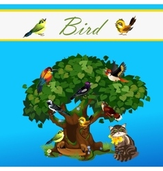Card with colorful birds on the tree and cat vector
