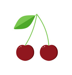 Flat design cherry isolated on white background vector