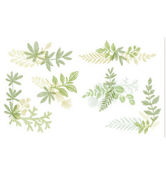 green floral hand drawn decoration elements vector image vector image