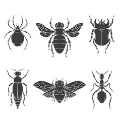 Set of insects isolated on white vector