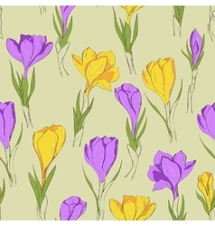 Crocus seamless patterm 3 purple yellow vector