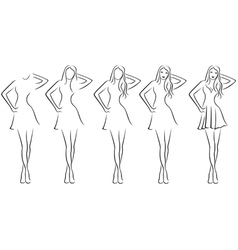 Beautiful young women contour in drawing sequence vector