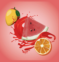 mango watermelon and orange splash vector image