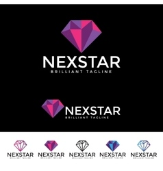 Next star logotype vector