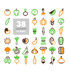 vegetables outline icons set vector image vector image