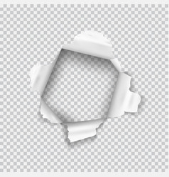 torn paper realistic hole in the sheet of paper vector image
