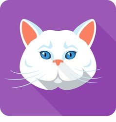 White british Cat icon flat design vector image vector image