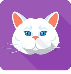 White british cat icon flat design vector