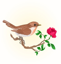 Small bird on the twig rose vintage vector