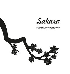 black silhouette of sakura on a white background vector image