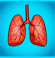 human lungs pop art style vector image