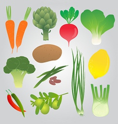 Organic Vegetables Collection vector image