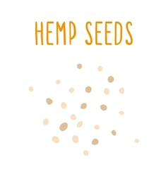 Hemp seeds vector