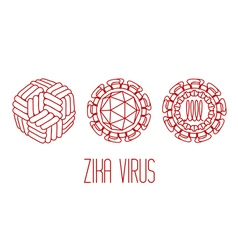 Zika virus structure vector