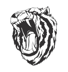 Angry tiger vector