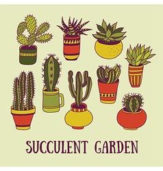 Succulents garden vector image