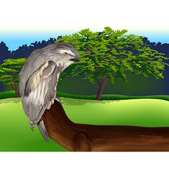 Wild bird vector