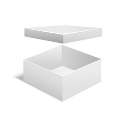 realistic template blank white box vector image
