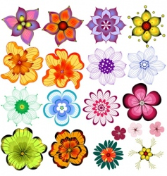 collection decorative flowers vector image