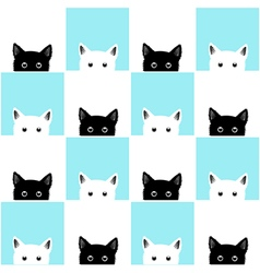 Blue white cat chess board background vector