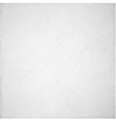 white texture background vector image