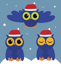Holiday with owls vector