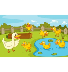 Ducks at the pond vector