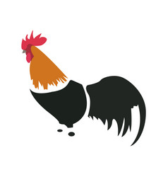 Isolated abstract chicken vector