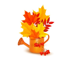 Autumn background with colorful leaves growing in vector image vector image