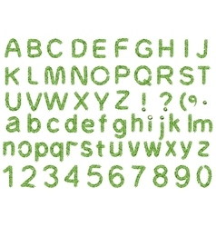 Spruce alphabet isolated on white background vector image vector image