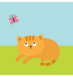 Cute red orange cat lying on grass and looking at vector