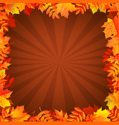 autumn background with leaves border vector image