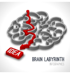Brain labyrinth infographics vector image vector image