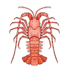 Decorative isolated crayfish vector