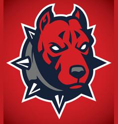 Pitbull dog mascot head vector