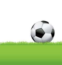 Soccer ball football in the grass vector