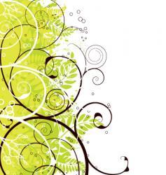 autumn floral border vector image vector image