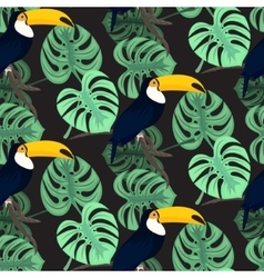 Monstera tropic plant leaves and toucan bird vector image vector image