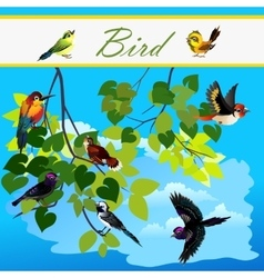 Birds on the branches tree flying in sky vector