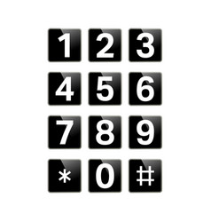 digital keypad isolated vector image vector image