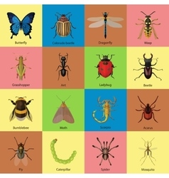 Set of insects flat style design icons Butterfly vector image vector image