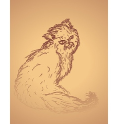 Persian cat sketch2 vector