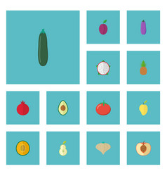 Flat icons aubergine pitaya muskmelon and other vector